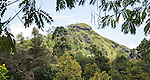 Little Adam's Peak mountain,  Ella, Badulla District, Uva Province, Sri Lanka, Asia view of Little  Adam's Peak