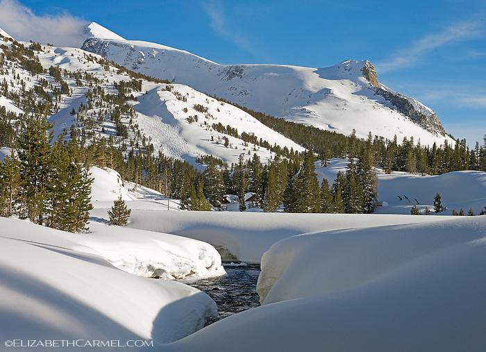 Toga Pass, Yosemite