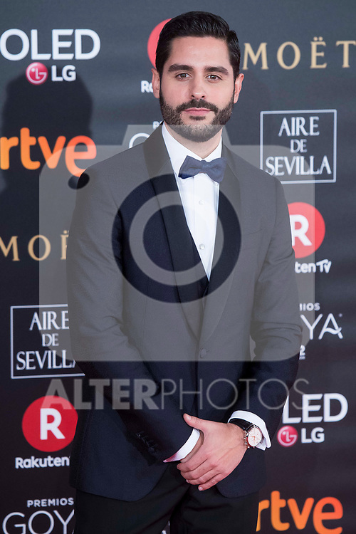 Miguel Diosdado attends red carpet of Goya Cinema Awards 2018 at Madrid Marriott Auditorium in Madrid , Spain. February 03, 2018. (ALTERPHOTOS/Borja B.Hojas)