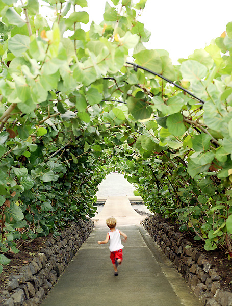 A young boy runs through a garden trellis towards a dock at the Cap Est Lagoon Resort & Spa. Cap Est, Martinique. Eastern Caribbean.