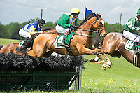 21 April 2012:   Via Galilei (IRE) and Ross Geraghty win the Temple Gwathmey (gr III) hurdle stakes at Middleburg Spring Races at Glenwood Park in Middleburg, Va. Via Galilei is owned by Irvin Naylor and trained by Joseph Delozier III.   Susan M. Carter/Eclipse Sportswire