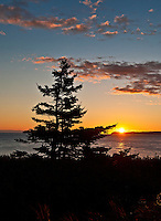 Coastal sunrise, Lubec, Maine, ME, USA
