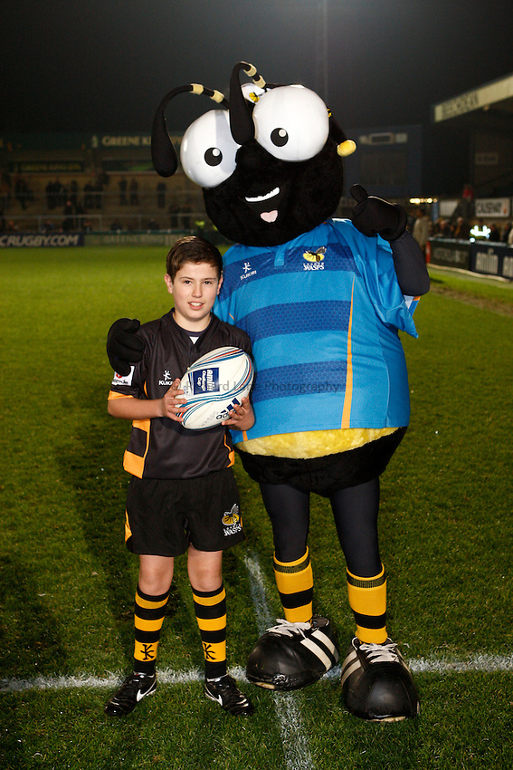 Photo: Richard Lane/Richard Lane Photography. London Wasps v Aviron Bayonne. Amlin Challenge Cup. 13/12/2012. Mascot.