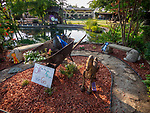 Award winning 4H garden, Friday at the 80th Amador County Fair, Plymouth, Calif..<br /> .<br /> .<br /> .<br /> #AmadorCountyFair, #1SmallCountyFair, #PlymouthCalifornia, #TourAmador, #VisitAmador