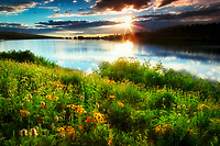 Fish Lake with wildflowers and sunset. Steens Mountain, Oregon