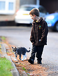 Pictured:  Rocky the cat who follows Miles Povey to his school in Southampton.<br /> <br /> Little Miles Povey and his new kitten are so inseparable that when he started school for the first time his pet came too.  The five-year-old walks to and from school every day accompanied by five month old Rocky.<br /> <br /> The grey and white quarter Persian kitten even joins him in classes and has become a firm favourite with Miles' school pals.  Miles joined reception at Oakwood Primary School in Southampton, Hants, last month.  SEE OUR COPY FOR DETAILS.<br /> <br /> © Roger Arbon/Solent News & Photo Agency<br /> UK +44 (0) 2380 458800