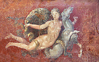 Roman fresco wall painting of a Nereid lying on a sea horse  from the  triclinium,  a formal dining room, of the Villa Arianna (Adriana), Stabiae (Stabia) near Pompeii , inv 8859, Naples National Archaeological Museum
