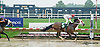 Deployingresources winning at Delaware Park racetrack on 6/12/14