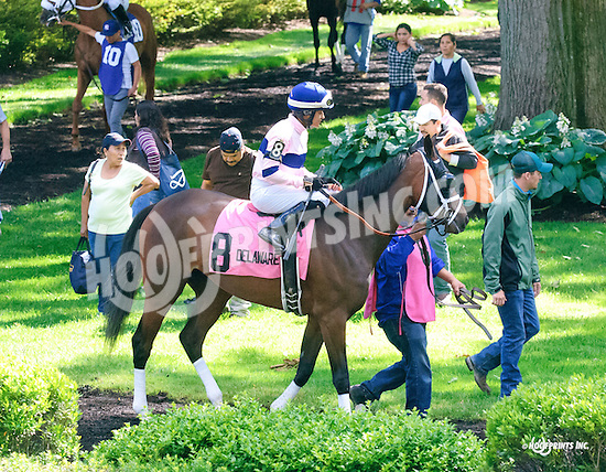 Dreams To Reality before The Our Mims Stakes at Delaware Park on 6/8/16