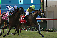 DEL MAR, CA  JULY 16: #8 She's Not Here ridden by jockey Drayden Van Dyke and #1 Fresh Feline and Victor Espinoza duel in the stretch of the Yellow Ribbon Handicap (GII) at Del Mar Turf Club in Del Mar, CA on July 16, 2016(Photo by Casey Phillips/Eclipse Sportswire/Getty ImagesDEL MAR, CA  JULY 16: (Photo by Casey Phillips/Eclipse Sportswire/Getty Images
