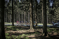 Early breakaway group through the forest of the Baraque Fraiture. <br /> <br /> <br /> 104th Liège - Bastogne - Liège 2018 (1.UWT)<br /> 1 Day Race: Liège - Ans (258km)