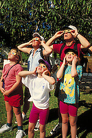 parents and children viewing solar eclipse while wearing mylar glasses. family.
