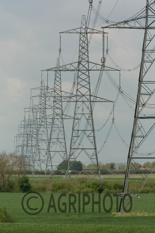 Electricity pylons on farmland<br /> Picture Tim Scrivener 07850 303986