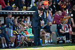 Home manager Gary Bowyer shows his frustration during the first-half as Bradford City played Carlisle United in a Skybet League 2 fixture at Valley Parade. The home team were looking to bounce back after being relegated during a disastrous 2018-19 season on and off the pitch. Bradford won the match 3-1, watched by a crowd of 14, 217.