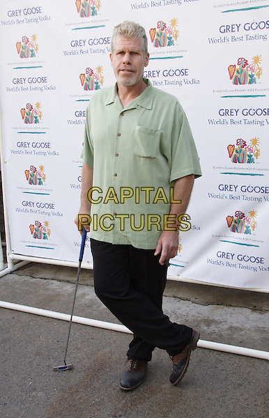 Ron Perlman at the Elizabeth Glaser Pediatric AIDS Foundation Fundraiser.