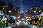 A starry sky rises above the Public Garden, Boston, Massachusetts, USA