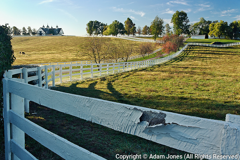 Manchester Horse farm in autumn, Lexington, Kentucky