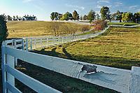 Manchester Horse farm in autumn, Lexington, Kentucky