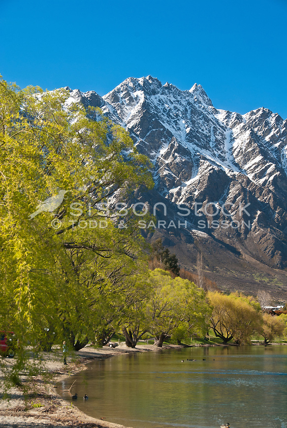 Green willow trees and snow covered Remarkables mountains from the edge of Lake Wakatipu at Frankton, Central Otago, South Island, New Zealand.