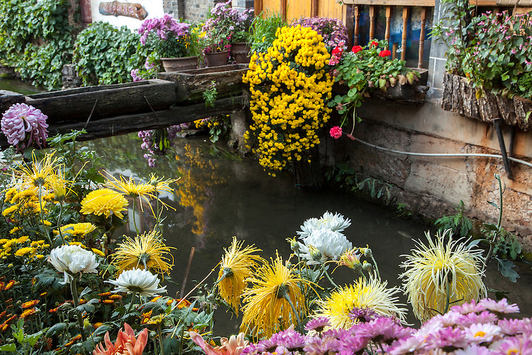 Lijiang's old town  in Yunnan province is outlined with flowers along the waterways.