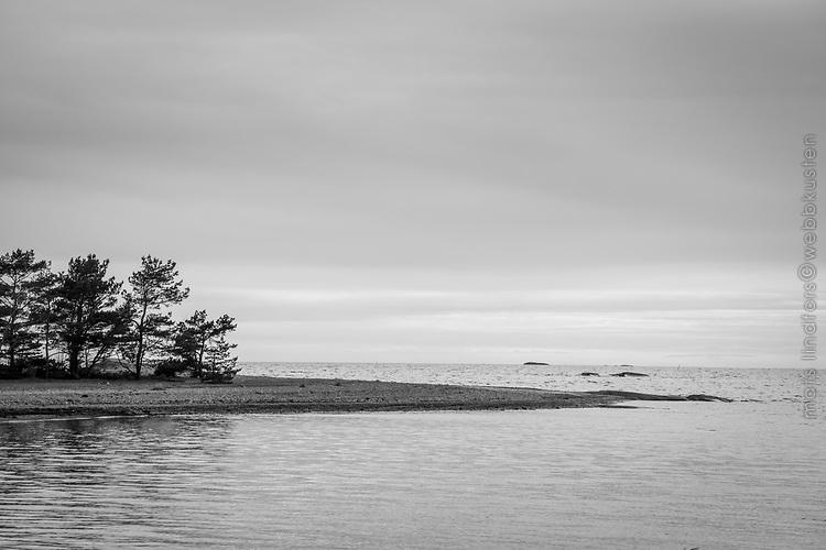 Lätta moln vid en havsstrand på Torö i Stockholms skärgård i svartvitt