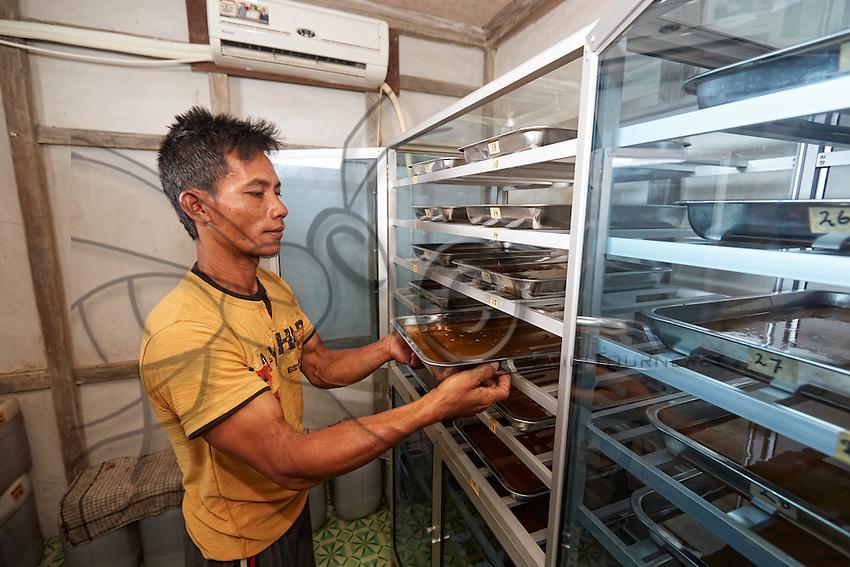 At the APDS association's premises, Suriadi monitors the dehydration of the honey. ///Dans les locaux de l'association APDS, Suriadi contrôle la déshumidification du miel.