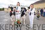 Lauren Fitzmaurice, Ballyduff (1st) and Aisling Harty, Ballyheigue (2nd). Class Two Best Holstein Friesian Calf born between November and December 2013 at the Castleisland Mart Calf Show on Saturday