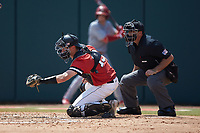 Northeastern Huskies catcher Michael Geaslen (13) frames a pitch as home plate umpire Eric Loveless looks on during the game against the North Carolina State Wolfpack at Doak Field at Dail Park on June 2, 2018 in Raleigh, North Carolina. The Wolfpack defeated the Huskies 9-2. (Brian Westerholt/Four Seam Images)