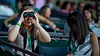 ELMONT, NY - JUNE 10: A woman uses a pair of binoculars to watch a race on Belmont Stakes Day at Belmont Park on June 10, 2017 in Elmont, New York (Photo by Scott Serio/Eclipse Sportswire/Getty Images)