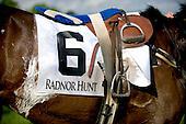 The Radnor Hunt.