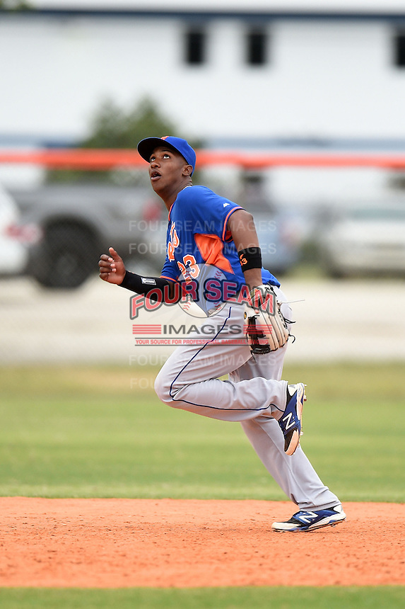 New York Mets third baseman Pedro Perez (23) during a minor league spring training game against the St. Louis Cardinals on March 27, 2014 at the Port St. Lucie Training Complex in Port St. Lucie, Florida.  (Mike Janes/Four Seam Images)