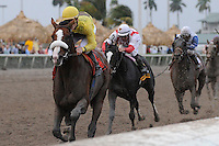 Union Rags (no. 7), ridden by Julien Leparoux and trained by Michael Matz, wins the 68th running of the grade 2 Fountain of Youth Stakes for three year olds on February 26, 2012 at Gulfstream Park in Hallandale Beach, Florida.  (Bob Mayberger/Eclipse Sportswire)