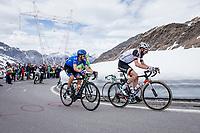 Laurens ten Dam (NED/Sunweb) up the Passo dello Stelvio (alt: 2758m)<br /> <br /> Stage 16: Rovett &rsaquo; Bormio (222km)<br /> 100th Giro d'Italia 2017