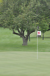 ARC Golf Classic 2013