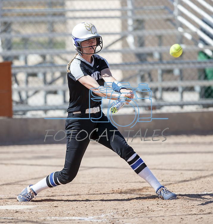 Western Nevada's Dakota Robinson hits against Colorado Northwestern at Edmonds Sports Complex Carson City, Nev., on Friday, March 18, 2016.<br />