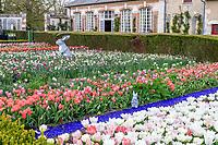 France, Loir-et-Cher (41), Cheverny, château et jardin de Cheverny en avril, le jardin bouquetier