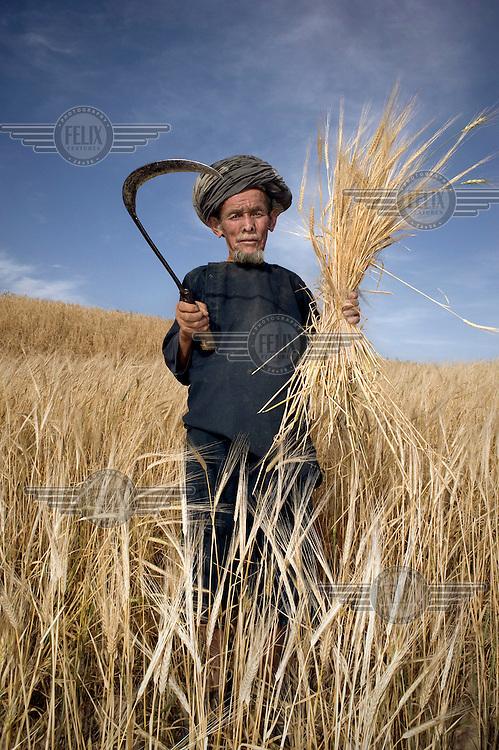 A farmer uses a scythe to harvest wheat.