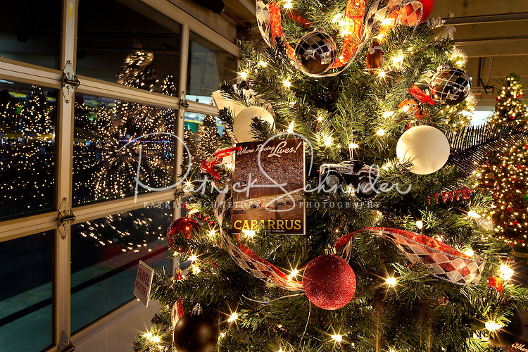 Christmas Lights At Charlotte Motor Speedway