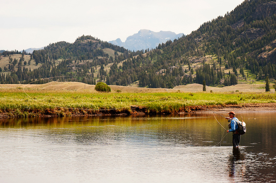 A fisherman cast on Slough Creek in Yellowstone National Park.