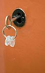 Key on keyring in house door lock