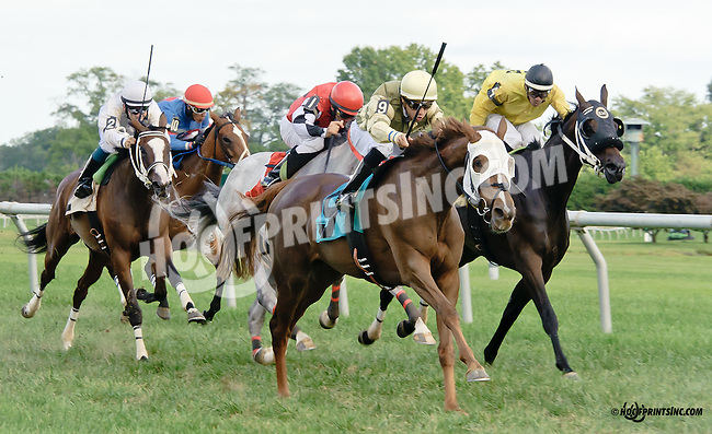 E C's Favorite winning at Delaware Park on 9/10/14