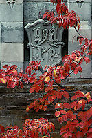 Yale seal with autumn dogwood New Haven CT