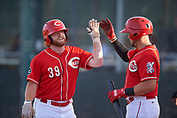 AZL Reds Caleb Van Blake (39) is congratulated by Wendell Marrero (31) after hitting a home run during an Arizona League game against the AZL Athletics Green on July 21, 2019 at the Cincinnati Reds Spring Training Complex in Goodyear, Arizona. The AZL Reds defeated the AZL Athletics Green 8-6. (Zachary Lucy/Four Seam Images)