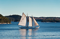 Yacht sailing off coast of Castine, Maine, ME, USA
