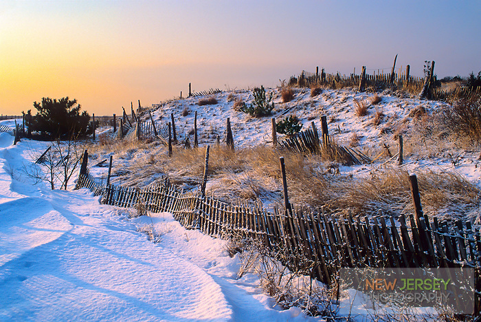 Snow covered Sand Dunes & sand fencing, Barnegat Light, Long Beach Island, New Jersey