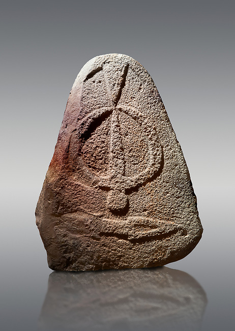 Late European Neolithic prehistoric Menhir standing stone with carvings on its face side. The representation of a stylalised male figure starts at the top with a long nose from which 2 eyebrows arch around the top of the stone. below this is a carving of a falling figure with head at the bottom and 2 curved arms encircling a body above. at the bottom is a carving of a dagger running horizontally across the menhir. Excavated from Piscina 'E Sali II site,  Laconi. Menhir Museum, Museo della Statuaria Prehistorica in Sardegna, Museum of Prehoistoric Sardinian Statues, Palazzo Aymerich, Laconi, Sardinia, Italy. Grey background.