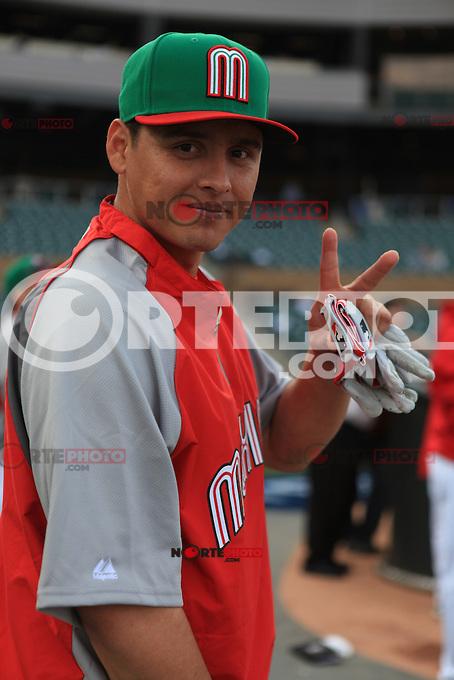 **2013 World Baseball Classic in Arizona