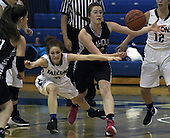 Birmingham Seaholm at Rochester, Girls Varsity Basketball, 1/7/16
