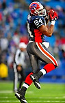 28 December 2008: Buffalo Bills' tight end Robert Royal makes a fourth quarter reception against the New England Patriots at Ralph Wilson Stadium in Orchard Park, NY. The Patriots kept their playoff hopes alive defeating the Bills 13-0 in their 16th win against Buffalo of their past 17 meetings. ***** Editorial Use Only ******..Mandatory Photo Credit: Ed Wolfstein Photo