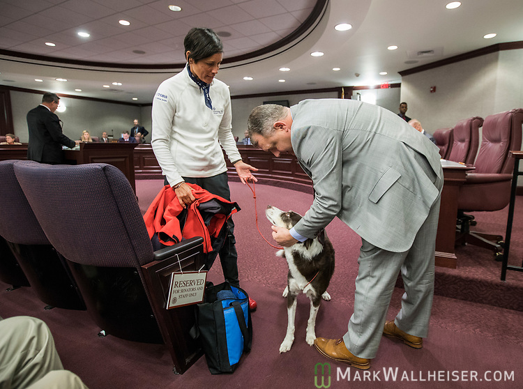 Senator Rob Bradley (R- Orange Park) pets Cosmo, an 11 year old border collie service dog after the Florida Senate Committee on Criminal Justice passed SB 416 as Cody's handler Tanya Cody looks on at the Florida Capitol in Tallahassee Florida March 13, 2017.
